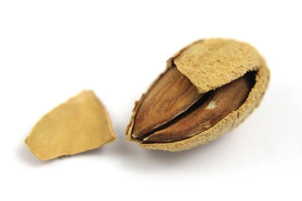 Double-Almond