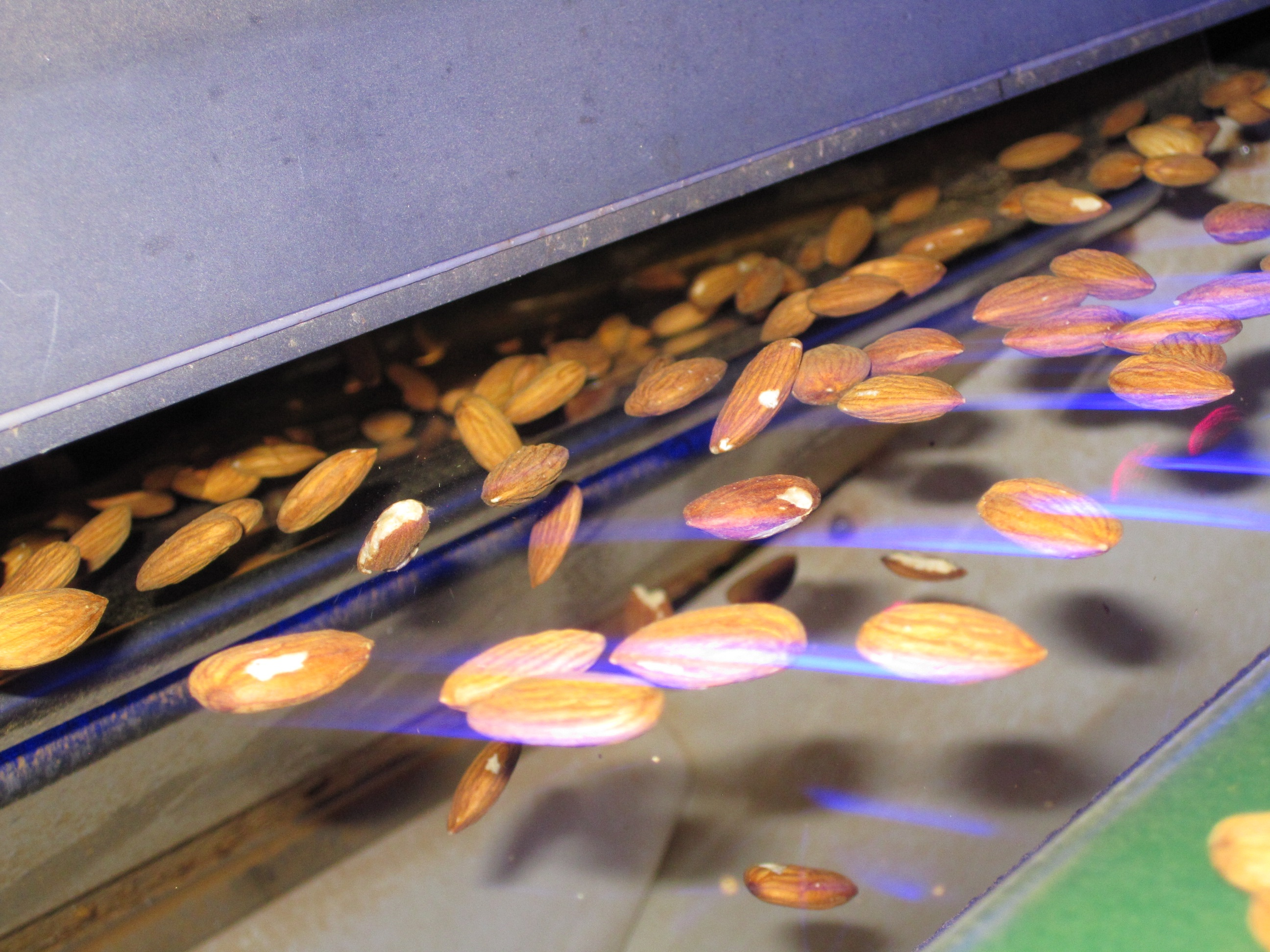 almond-sorting-with-TOMRA
