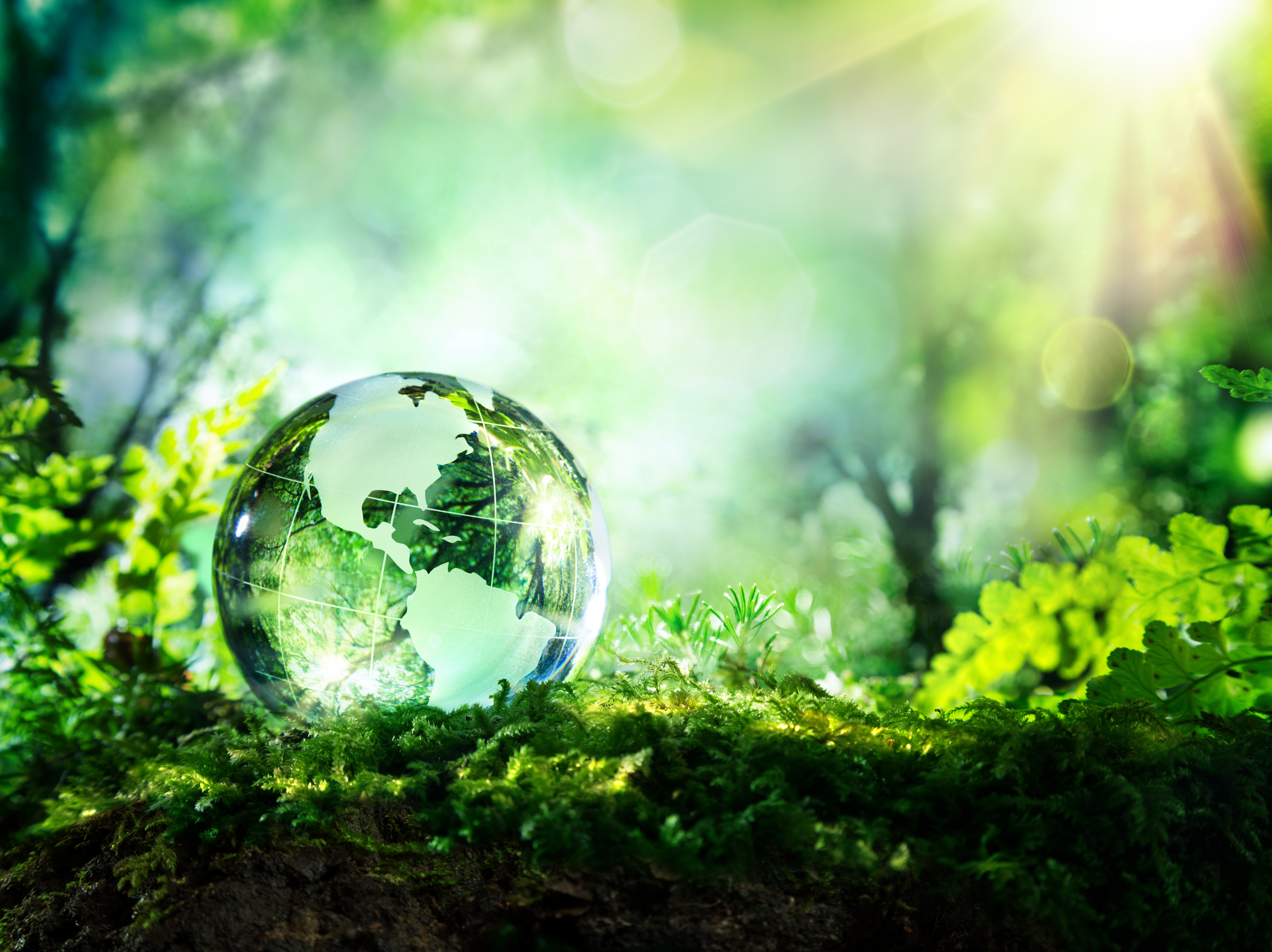 sustainability-environment-concept