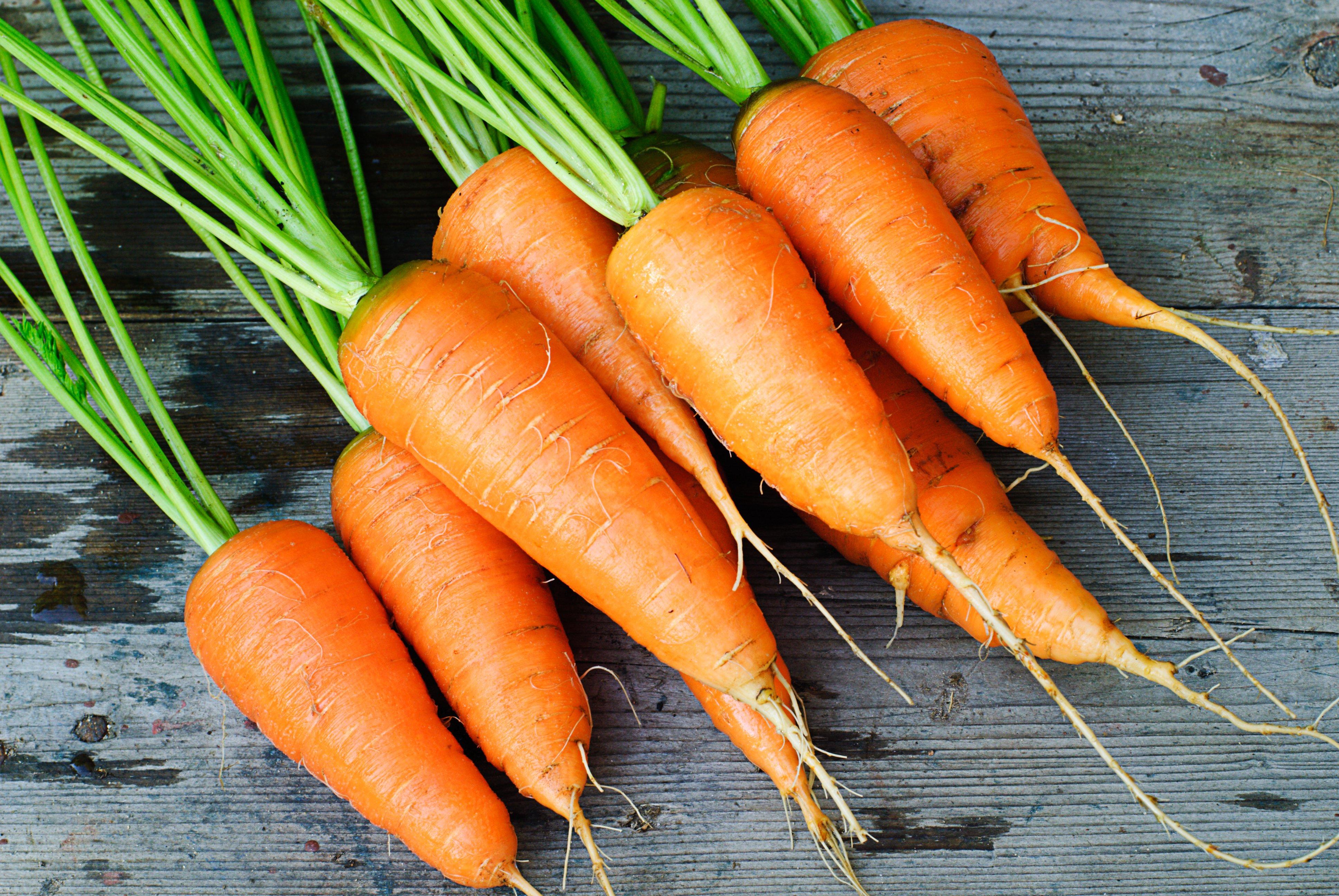 Carrot sorting